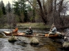 North Branch of the AuSable River- Fishing