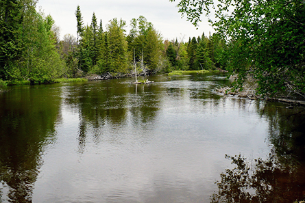 View of AuSauble River - Lovells Township