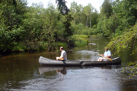 Canoeing on the Ausable River - Lovells Township