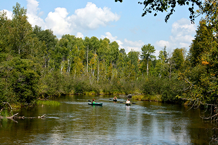 Kayaking on the North Branch of the Au Sable River - Lovells Township