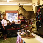 Suddon-ly Alive Taxidermy & Gifts